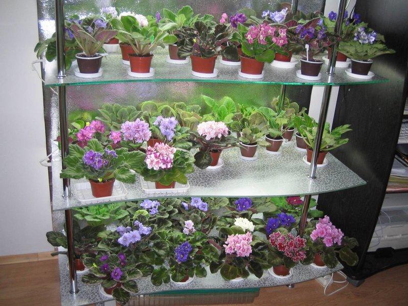 Стеллажи для цветов с подсветкой