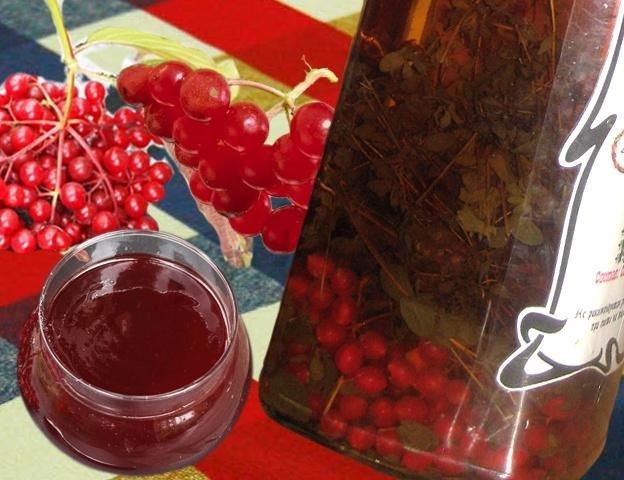 Красная рябина рецепты наливка в домашних условиях 22