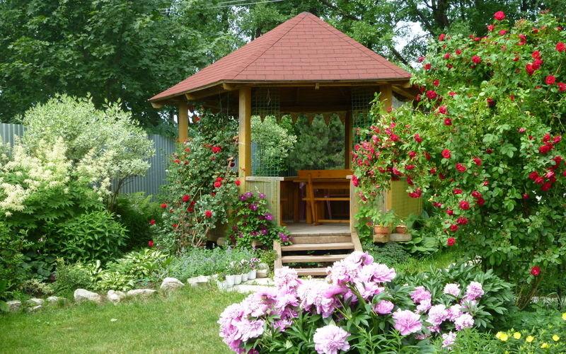 Беседка и цветы вокруг