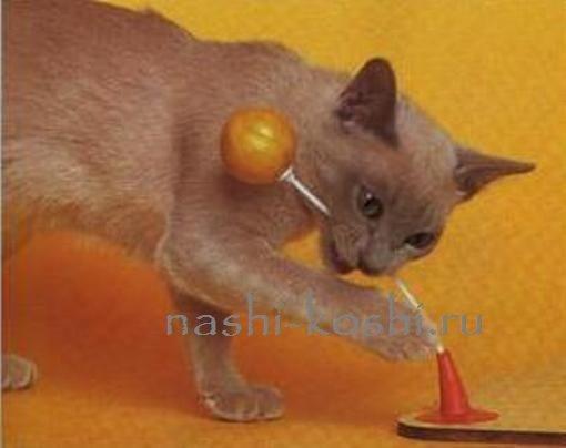 Как сделать игрушку для котёнка видео