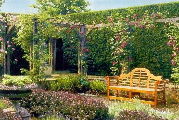 Ландшафтный дизайн с виноградом