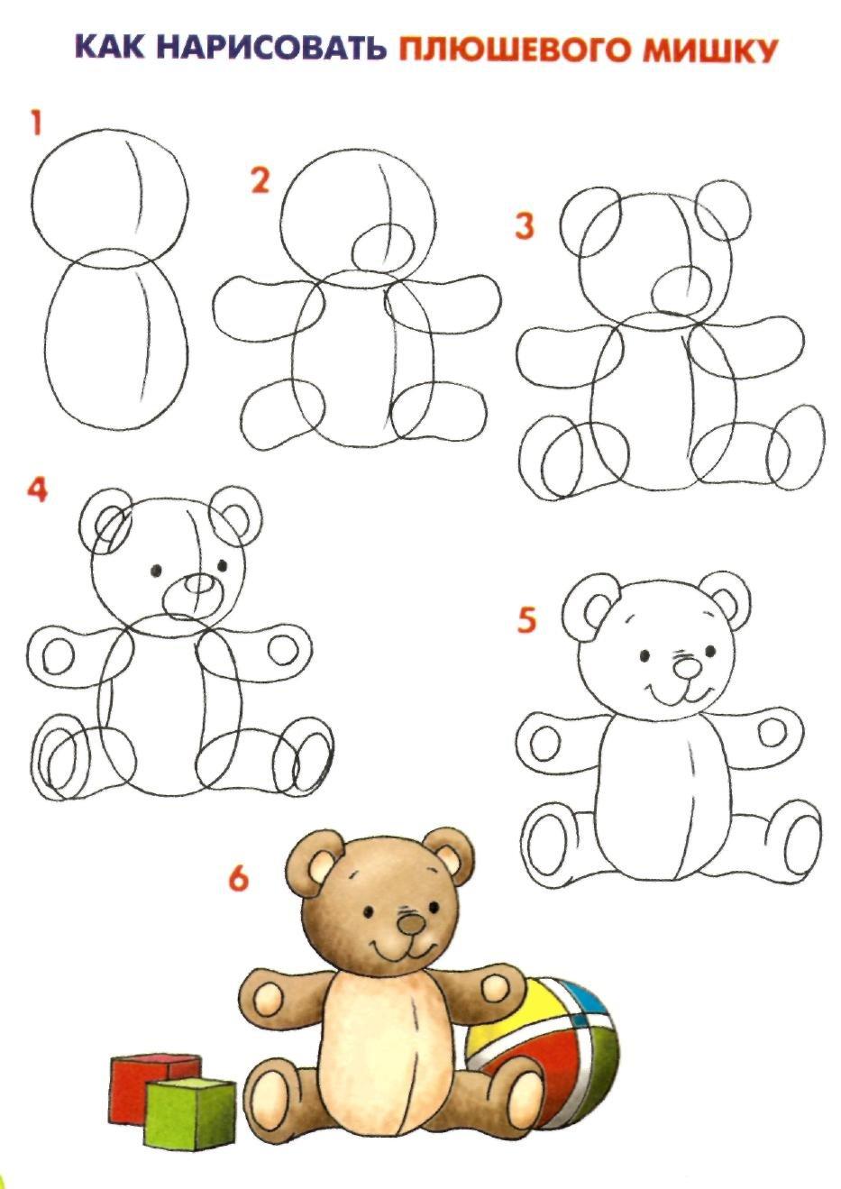 Как нарисовать мишку тедди поэтапно с сердечком