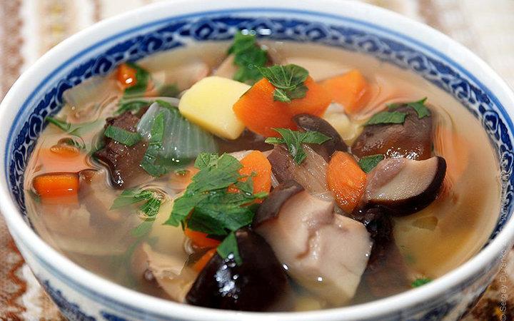 размер, учтите, грибной суп из свежих грибов рецепт с фото качестве базового