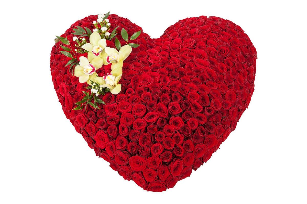 Фото цветок в виде сердца