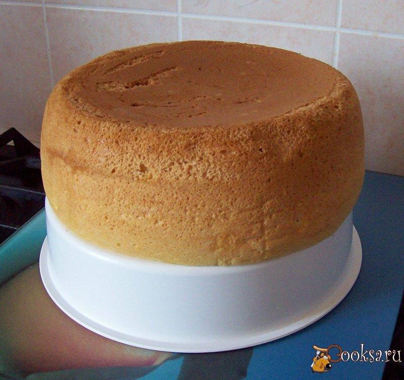 Бисквитный торт в мультиварке рецепт с фото пошагово в домашних