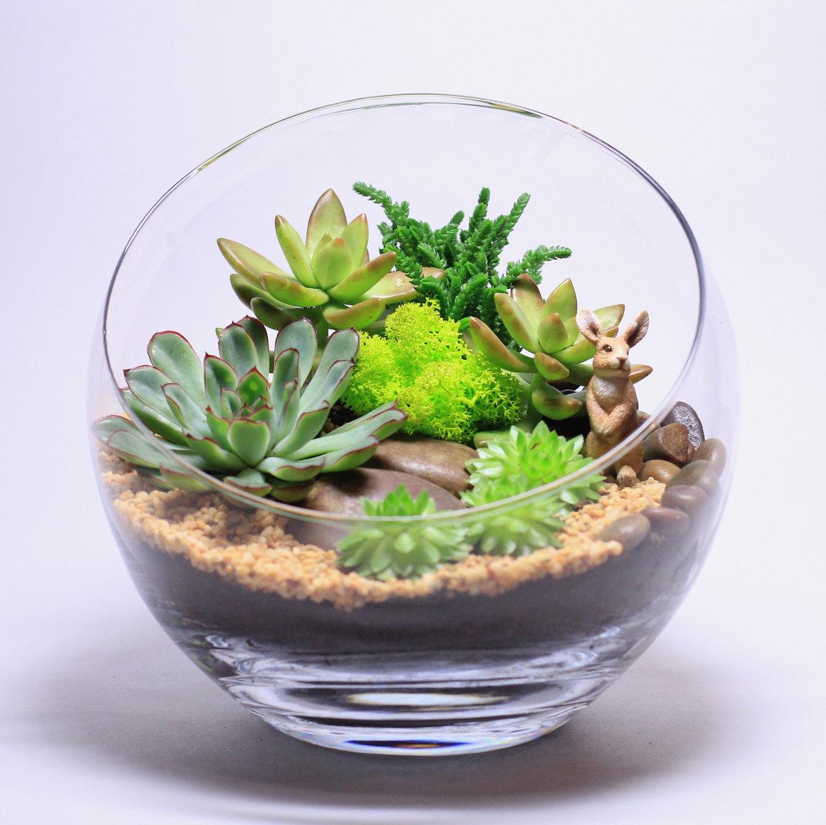 Как сделать флорариум своими руками - Handmade Idea 23
