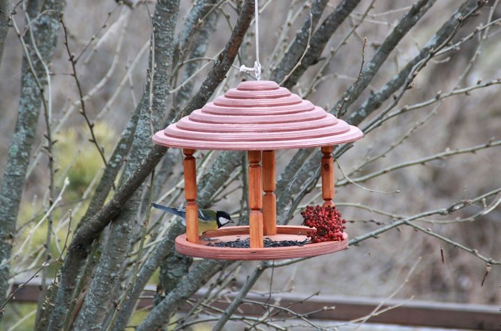 идеи с кормушкой для птиц с картинками