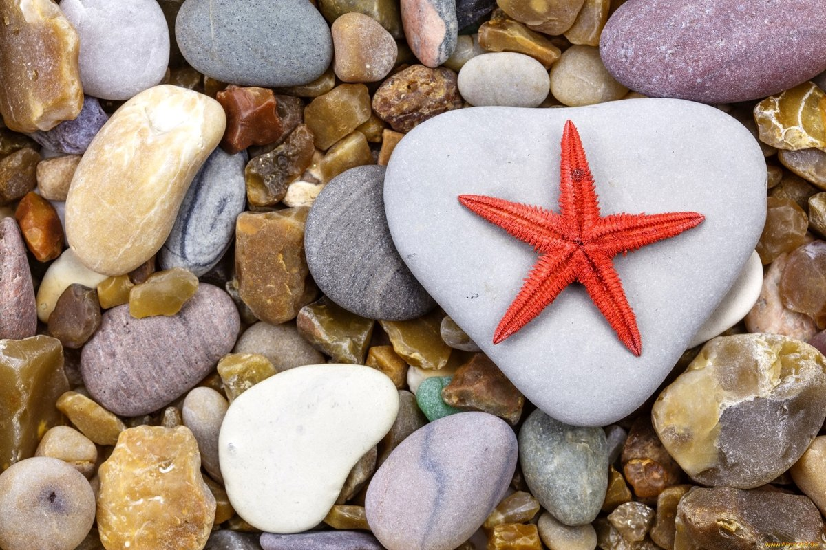 Камень с рисунком звезд