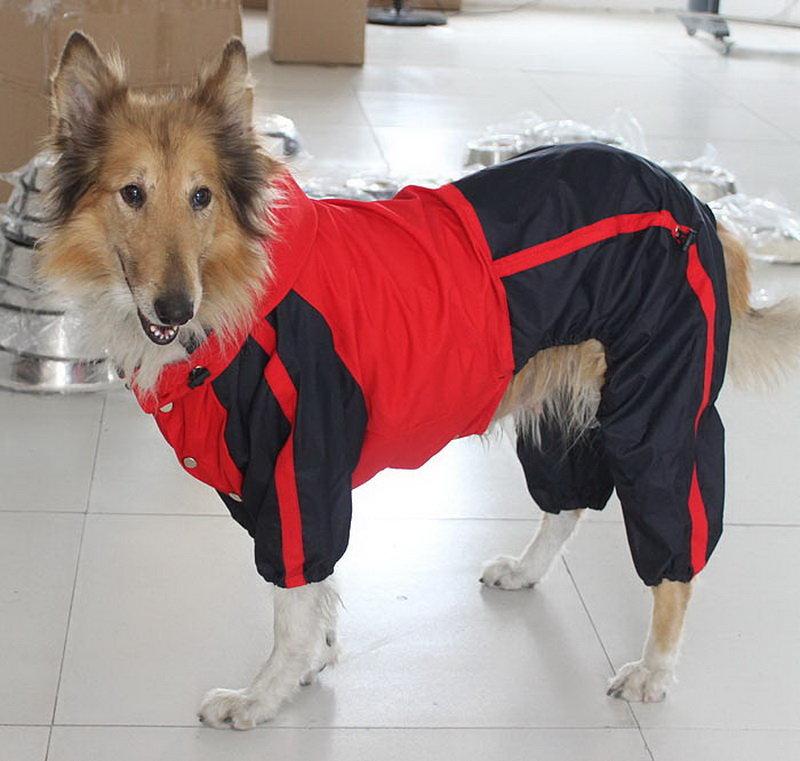 Есть одежда на больших собак