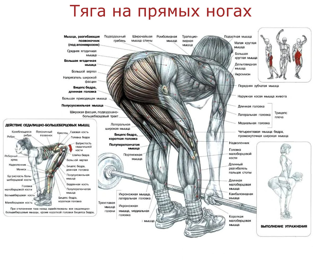 Упражнения для внутренней части