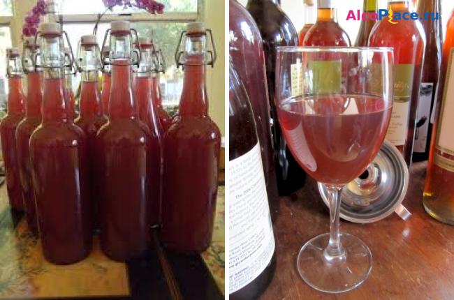Рецепт домашнее вино из чернослива в домашних условиях 92