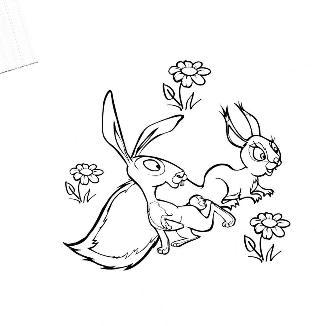 Раскраска белочка зайчик 14