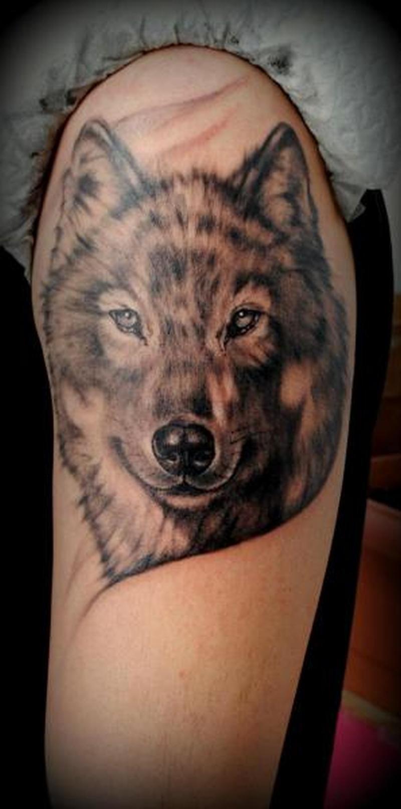 Тату волка для девушки фото