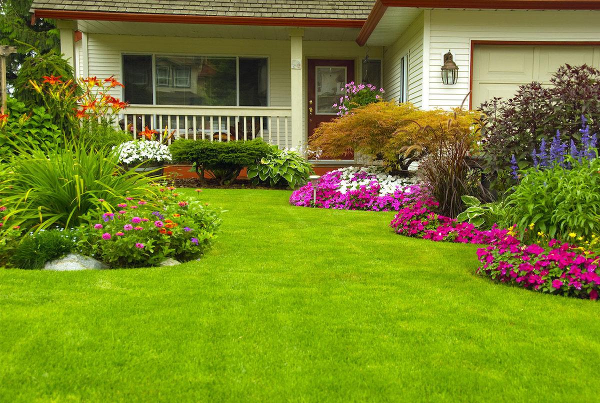 Дизайн газонов с цветами