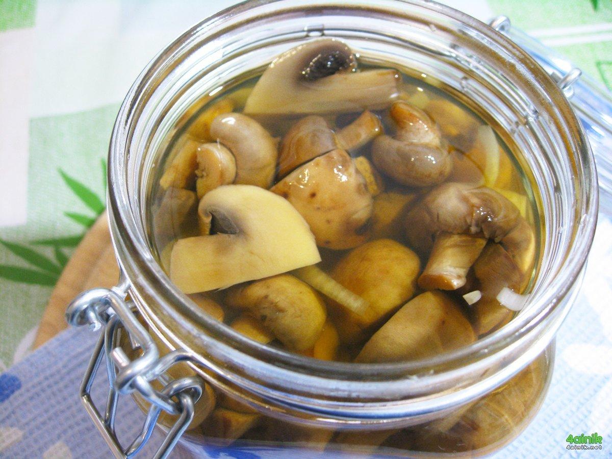 Маринование грибов в домашних условиях рецепт 19