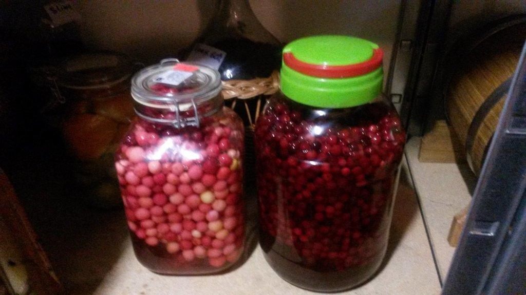 Как из ягод сделать наливку из 878