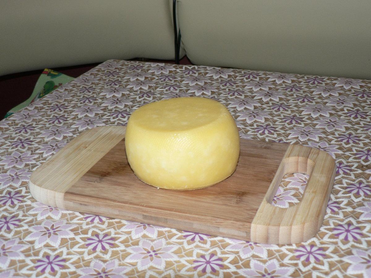 Твёрдый сыр своими руками