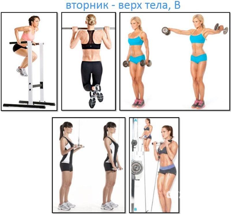 Базовые упражнения в тренажерном зале для