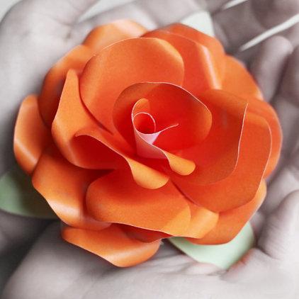 Цветок на з с