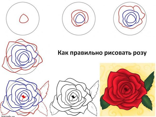 Роза своими руками нарисовать