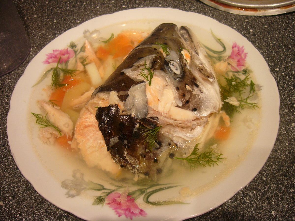 Уха из лосося фото пошагово