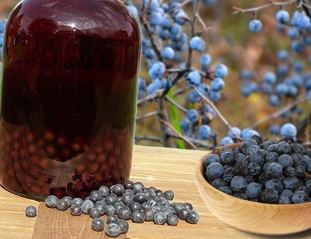 Рецепт домашнего вина из черной рябины в домашних условиях