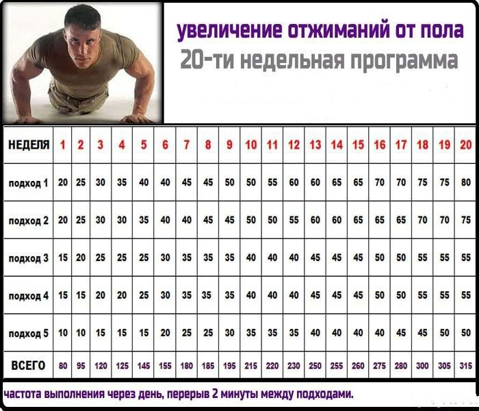 Как накачать грудные мышцы в домашних условиях парням 780