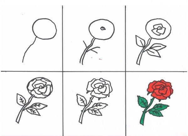 Как рисовать ручкой картинки поэтапно для девочек