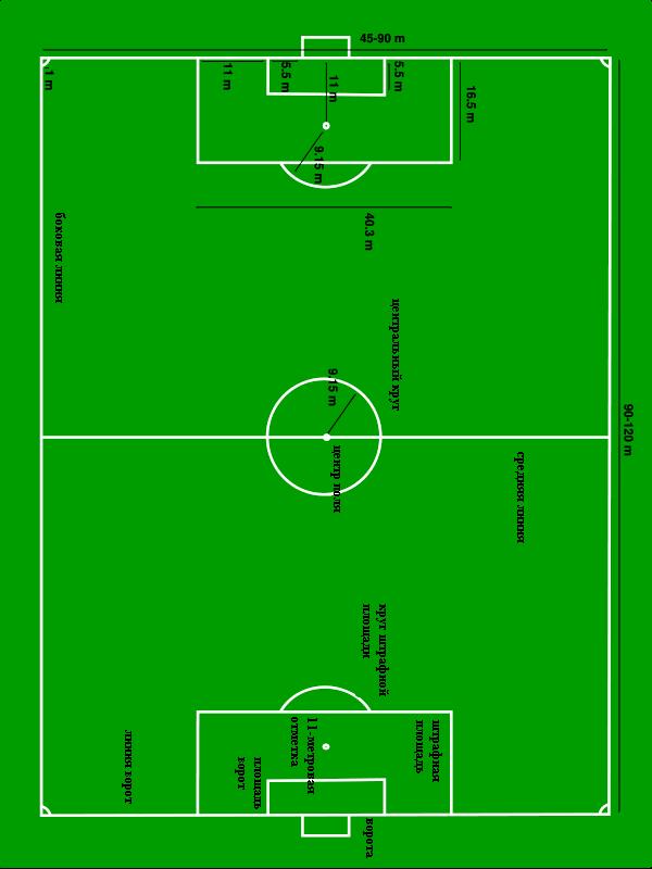 Разметка на футбольном поле своими руками