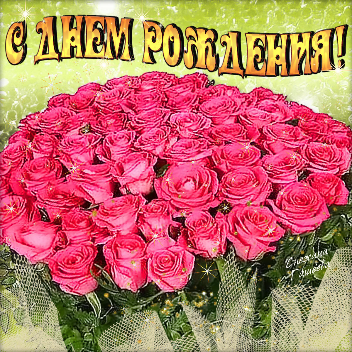 Комнатные цветы фото и уход за ними папоротник
