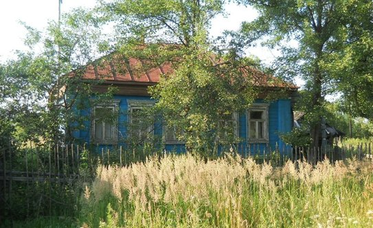 500 000 руб, дом в селе недалеко от рпроня, продажа домов и коттеджей ухорское, спасский район, id объекта