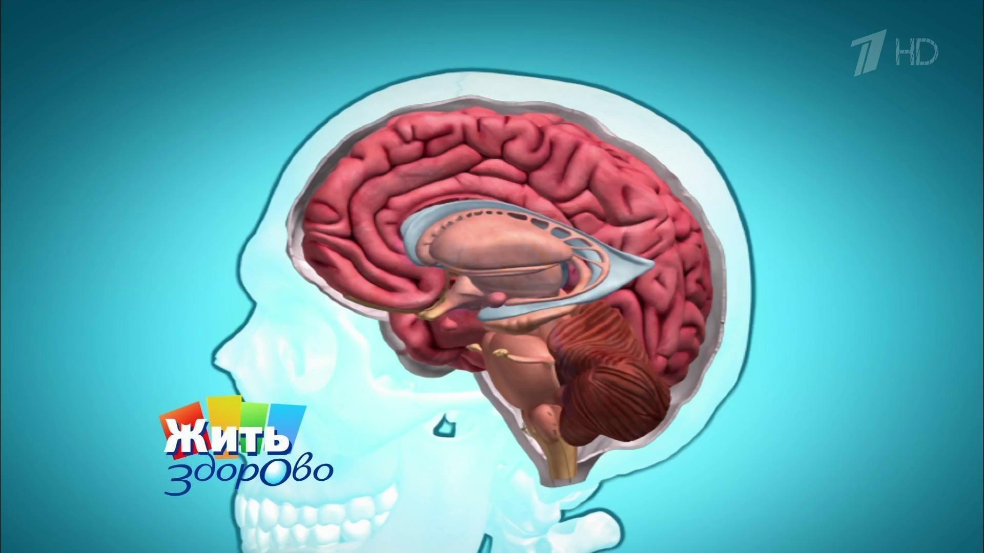 Беременность при опухоли головного мозга