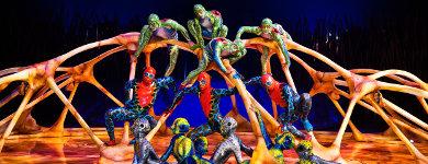 Cirque du Soleil. Totem