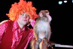 Шоу обезьян