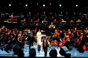 Дидюля в сопровождении камерного оркестра