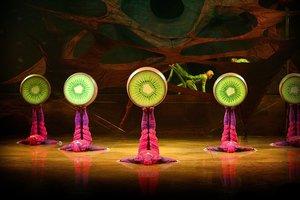 Ovo. Cirque du Soleil