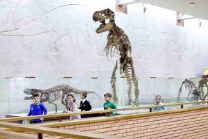 Палеонтологический квест