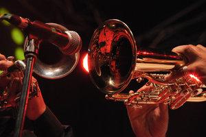 Lady in Jazz