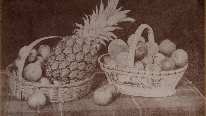 Ранняя британская фотография