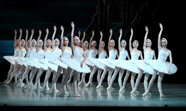 лебединое озеро балет мариинский театр купить билет