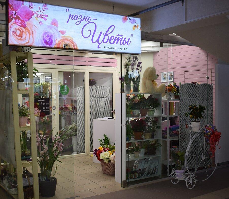 Роза, магазины цветы в калининград доставка на дом