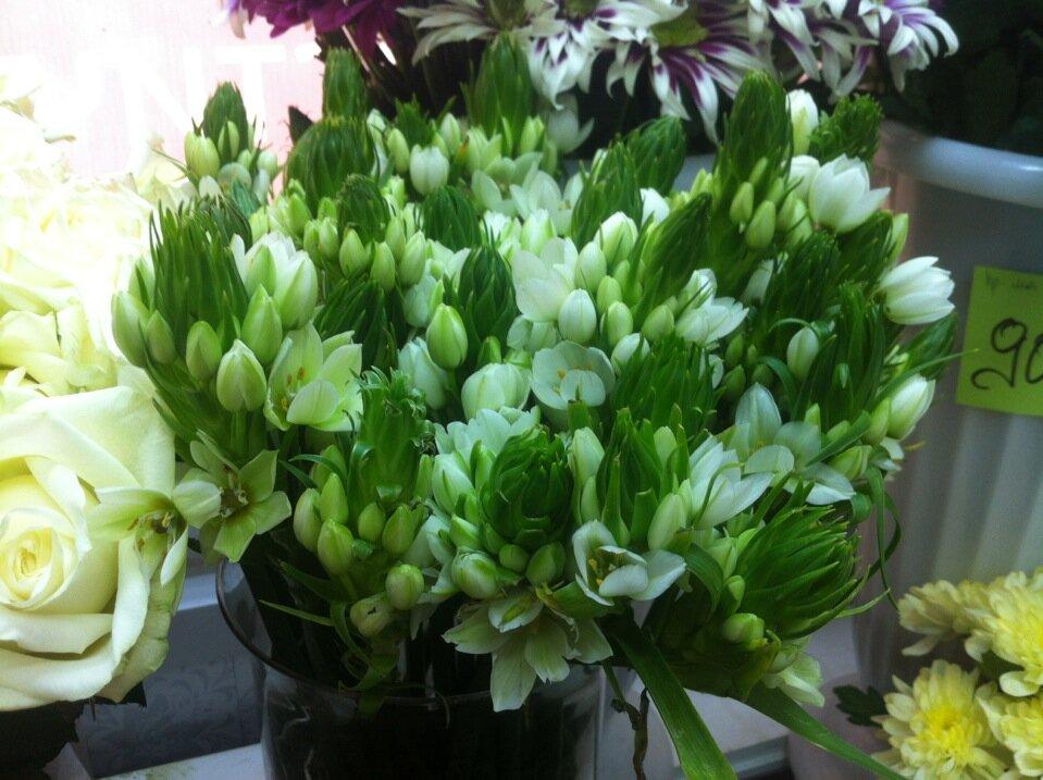 Букеты гор, доставка цветов в ступино московской области круглосуточно