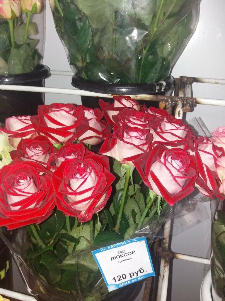Интернет магазин цветов саратов, заказать