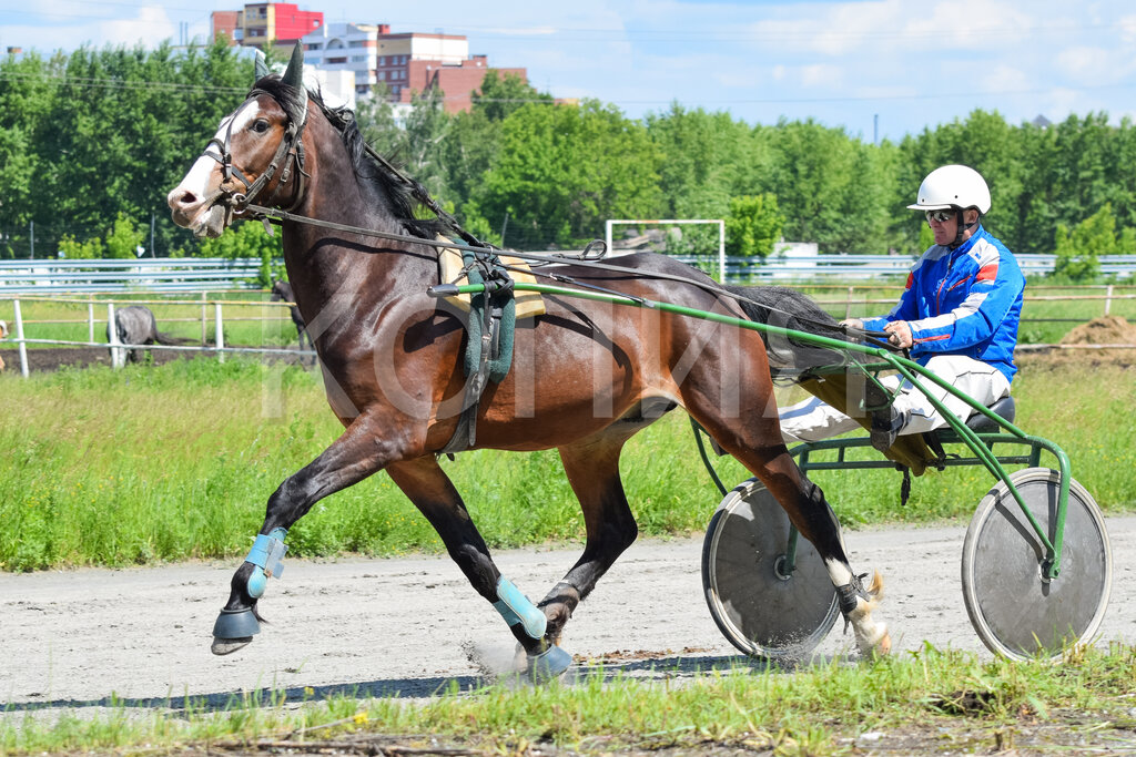 ялуторовск тюменская фото конный каждый гость найдет