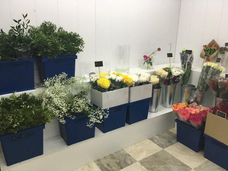 Купить цветы в домодедово ночью, оптом зеленоград микрорайон