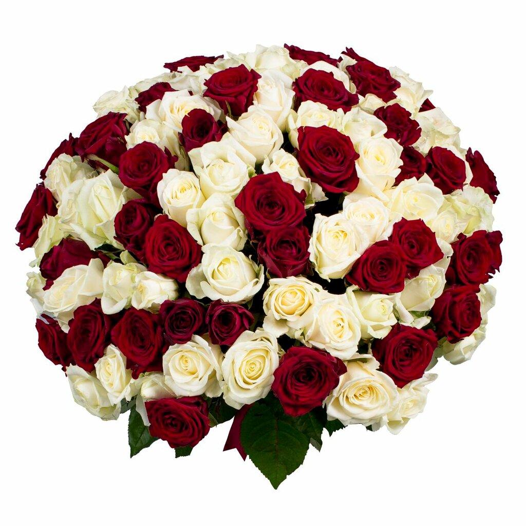 букеты из роз двух цветов смотреть фото это как