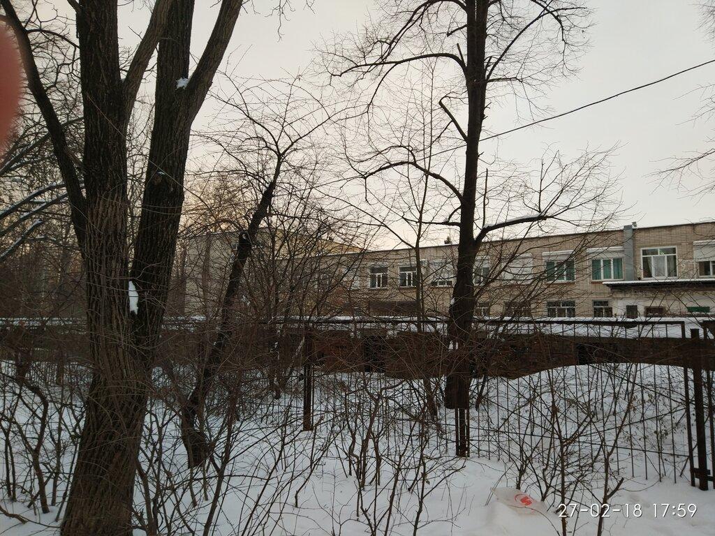 Шикарные фотообои одинокое дерево
