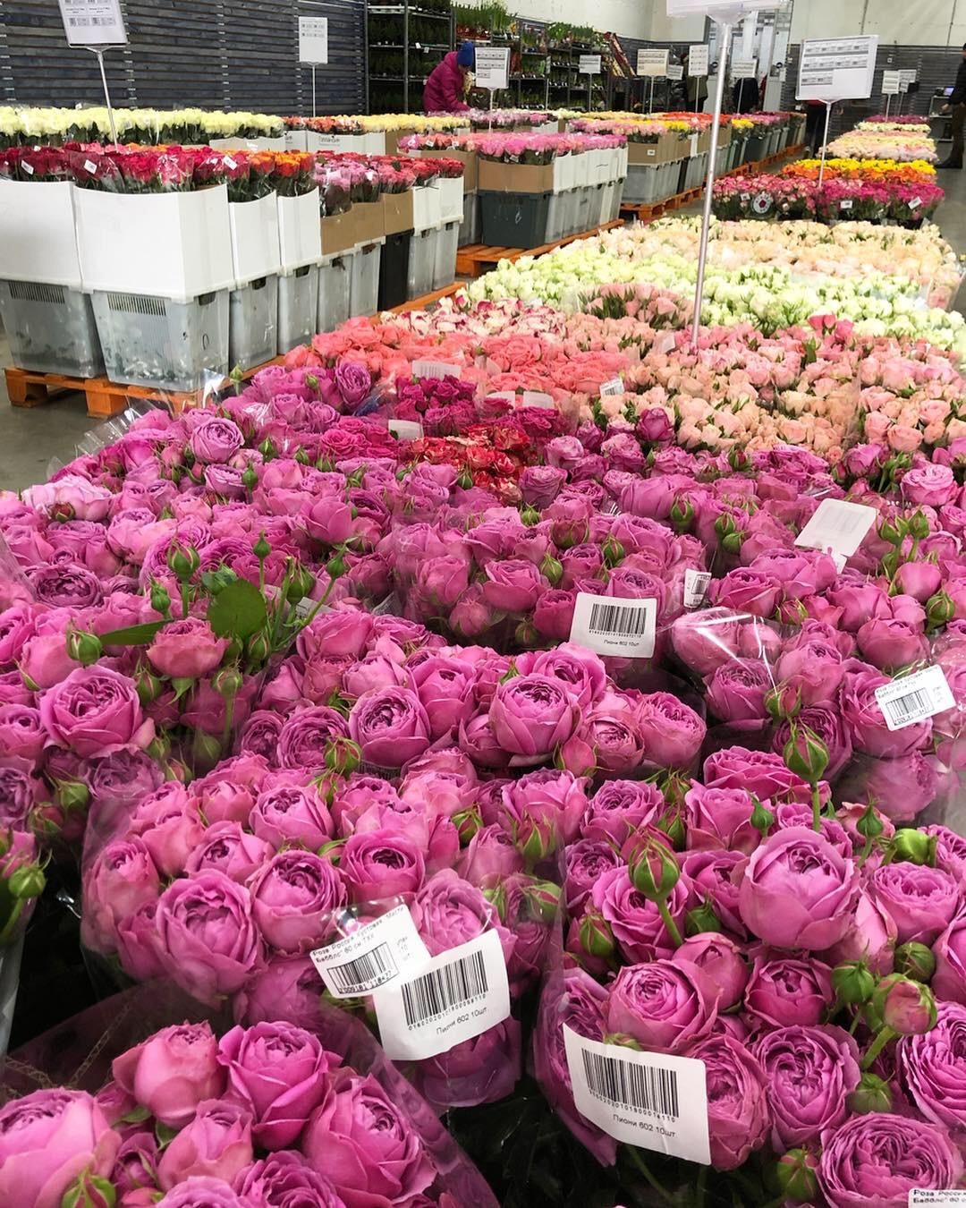 Букетами день, оптовая база цветов 1