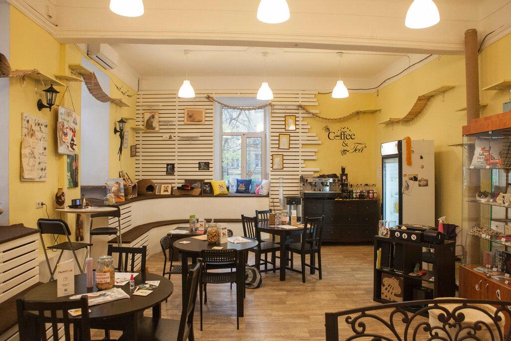 антикафе — Котофейня — Москва, фото №5