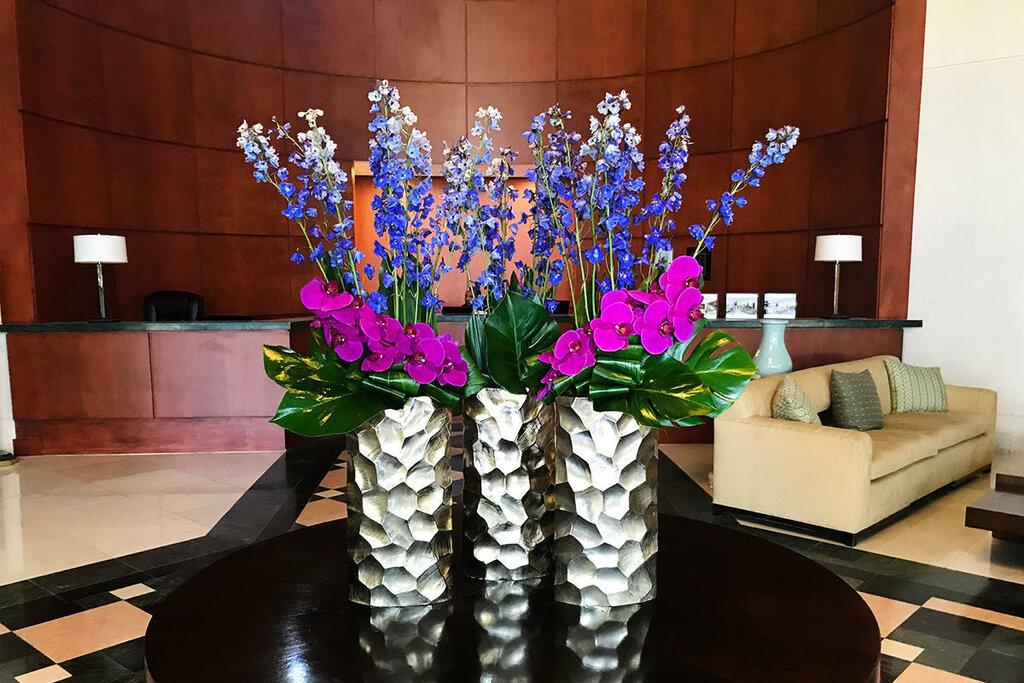 Риолис какие, цветы в майами купить